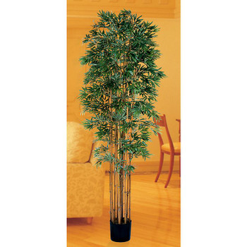6' Bamboo Japonica Silk Tree