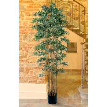 7' Bamboo Japonica Silk Tree