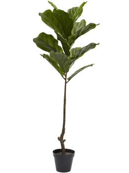 4' Fiddle Leaf Silk Tree UV Resistant, Indoor Outdoor