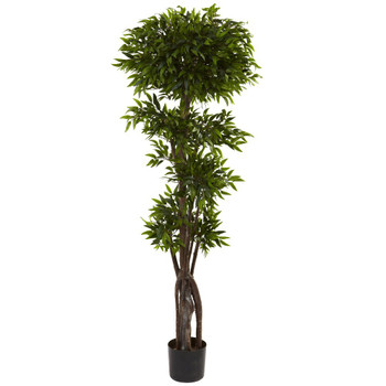 5' Silk Ruscus Tree