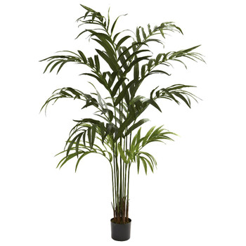 6' Silk Kentia Palm Tree