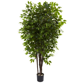 6.5' Deluxe Silk Ficus Tree