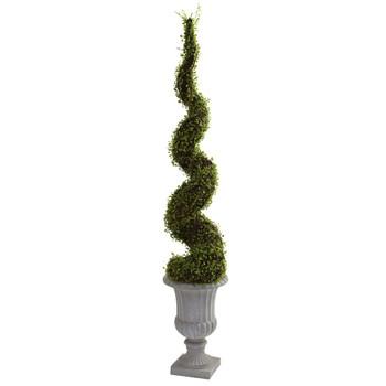 Muehlenbeckia Silk Spiral Tree with Decorative Urn