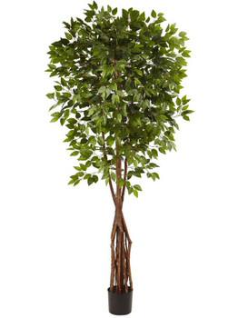 7.5' Super Deluxe Ficus Silk Tree