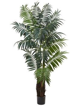7.5' Bulb Areca Palm Silk Tree