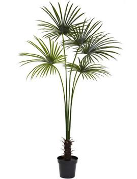 7' Fan Palm Silk Tree UV Resistant, Indoor Outdoor