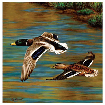 Golden Pond Flying Ducks Absorbent Beverage Coasters, Set of 8