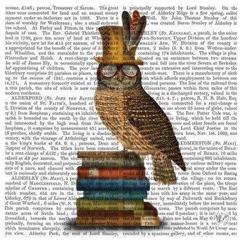 Owl Bird Sitting on Books Print Beverage Coasters, Set of 12
