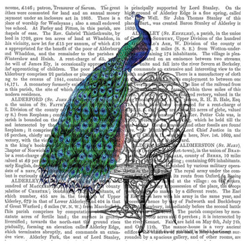 Peacock Bird Perching on a Chair Print Beverage Coasters, Set of 12