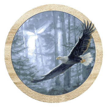 Soaring Eagle Sandstone Beverage Coasters, Set of 8