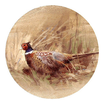 Pheasant Bird Sandstone Beverage Coasters, Set of 8