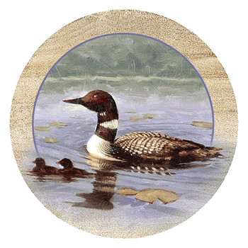 Loons Sandstone Beverage Coasters, Set of 8