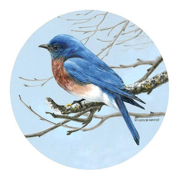 Bluebird Sandstone Beverage Coasters by Carolyn Mock, Set of 8