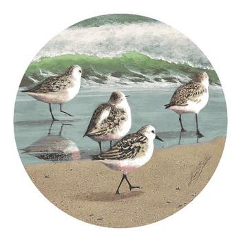 Sandpiper Bird Parade Sandstone Coasters by Lin Sesler, Set of 8