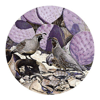 Desert Patterns Quail Birds Coasters by Nicholas Wilson, Set of 8