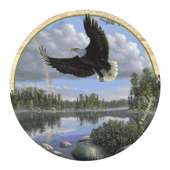 Soaring Eagle Sandstone Beverage Coasters by Kim Norlien, Set of 8