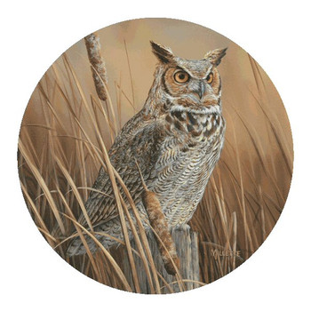 Owl Sandstone Beverage Coasters by Rosemary Millette, Set of 8