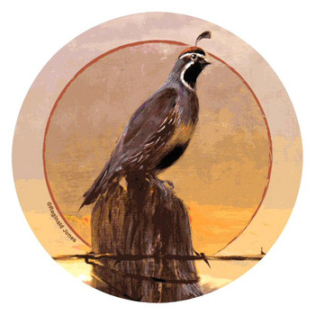 Quail Bird Morning Round Beverage Coasters by Reginald Jones, Set of 8