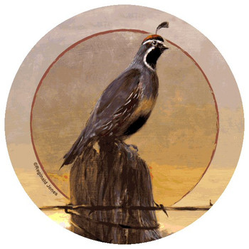 Quail Bird Morning Beverage Coasters by Reginald Jones, Set of 12
