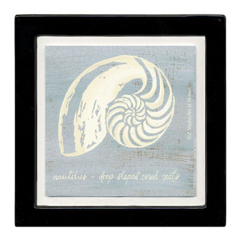 Imperial Nautilus Swirl Shell Beverage Coasters, Set of 8