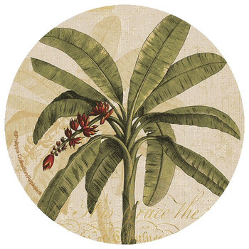 Round Palm Tree Beverage Coasters by Philippa Collection, Set of 12