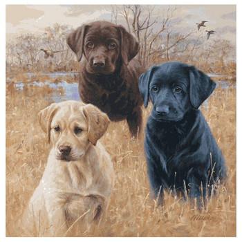 Marsh Daze Three Puppies Absorbent Coasters by Jim Killen, Set of 8