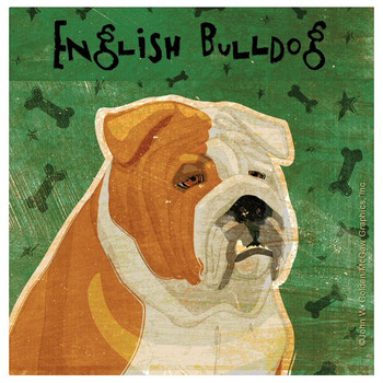 Bulldog Absorbent Beverage Coasters by John W Golden, Set of 12