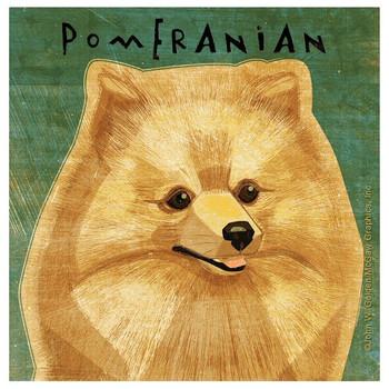 Pomeranian Dog Absorbent Beverage Coasters by John W Golden, Set of 12