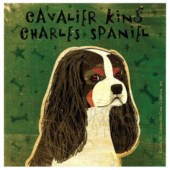 Cavalier King Charles Spaniel Dog Coasters by John W Golden, Set of 12