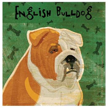 English Bulldog Absorbent Beverage Coasters by John W Golden, Set of 8