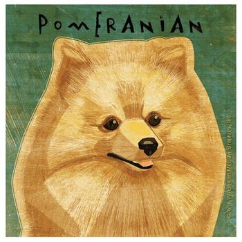 Pomeranian Dog Absorbent Beverage Coasters by John W Golden, Set of 8