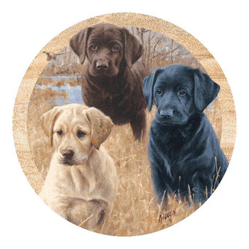 Marsh Daze Three Puppies Sandstone Coasters by Jim Killen, Set of 8