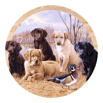 Marsh Madness Dogs and Duck Sandstone Coasters by Jim Killen, Set of 8