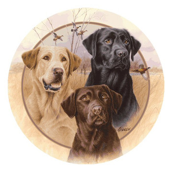 Great Hunting Dogs Absorbent Beverage Coasters by Jim Killen, Set of 8