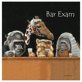 Bar Exam Animals Absorbent Beverage Coasters by Will Bullas, Set of 12
