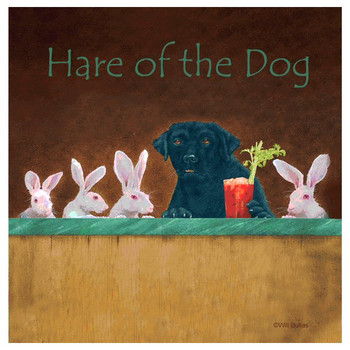 Hare of the Dog Absorbent Beverage Coasters by Will Bullas, Set of 12