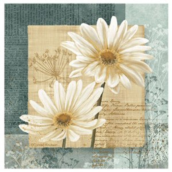 Daisy Flower Field I Absorbent Coasters by Conrad Knutsen, Set of 8