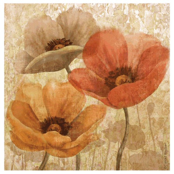 Allure II Poppy Flower Beverage Coasters by Conrad Knutsen, Set of 8