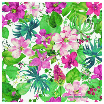 Tropical Dream Absorbent Beverage Coasters, Set of 12