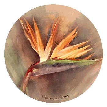 Bird of Paradise Flower Sandstone Coasters by Chauncey Homer, Set of 8