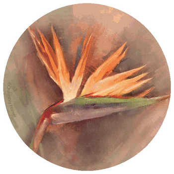 Bird of Paradise Round Beverage Coasters by Chauncey Homer, Set of 12