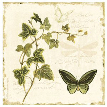 Ivies & Ferns w/Butterfly Beverage Coasters by Lisa Audit, Set of 8