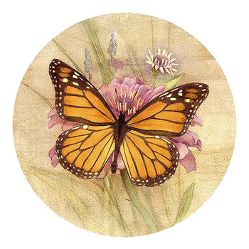 Amber Elegance Butterfly Sandstone Beverage Coasters, Set of 8