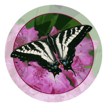 Swallowtail Butterfly Round Coasters by John Hendrickson, Set of 12