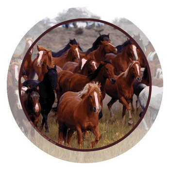 Horse Collage Round Beverage Coasters by Ron Kimball, Set of 8