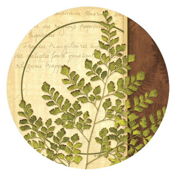 Ferns IV Round Beverage Coasters by Delphine Corbin, Set of 8
