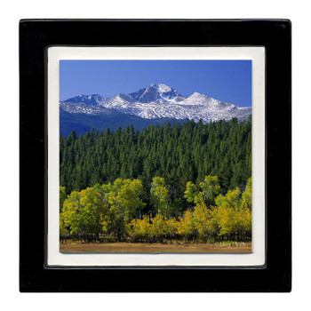 Aspen Landscape Beverage Coasters, Set of 8
