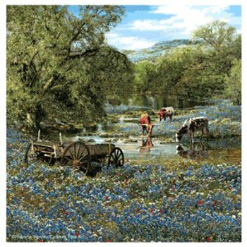 Hill Country Blues Beverage Coasters by Roberta Wesley, Set of 8