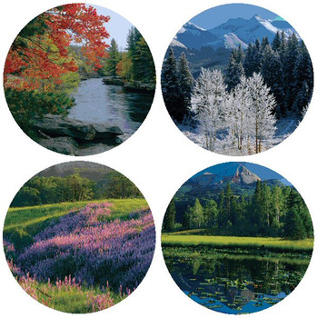 Seasons Absorbent Beverage Coasters by Larry Ulrich, Set of 8