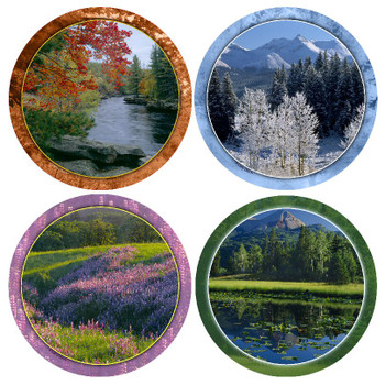 Seasons Beverage Coasters, Set of 8